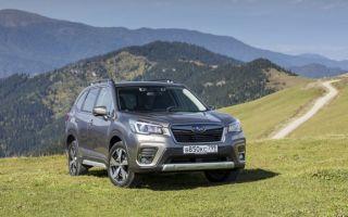 Субару Форестер (Subaru Forester): обзор модели, все плюсы и минусы