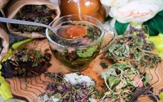 Чай для похудения, какой лучше: в аптеках или сделанный в домашних условиях, рецепты и отзывы