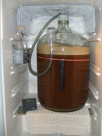 Домашняя пивоварня - какую выбрать: отзывы покупателей и советы как приготовить пиво