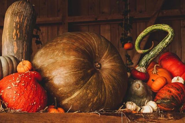 Как выбрать вкусную сладкую тыкву в магазине и на рынке, чтобы подходила для запекания + фото