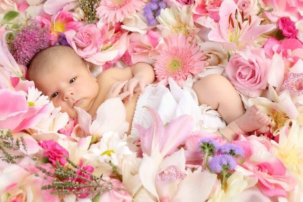 Масло для новорожденных какое лучше выбрать + отзывы