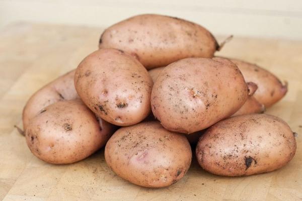 Как выбрать картофель при покупке на рынке или в магазине на хранение на зиму